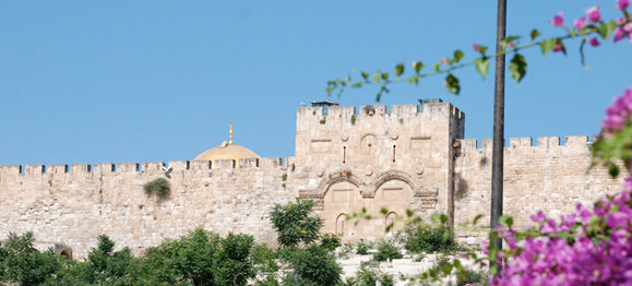 Eastern-Wall-from-Garden-of-Gethsemane