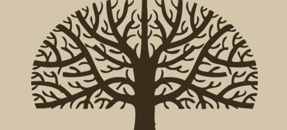 The Gospel in the Genealogy