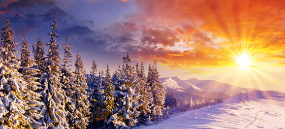 Fasting for Winter Revival